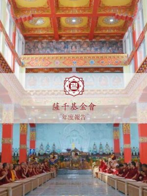 SF_annual report 2020 chinese 1